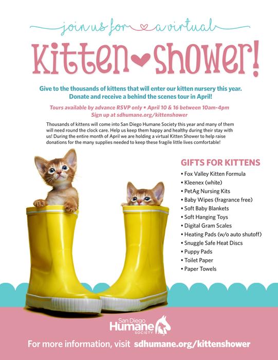 KittenShower